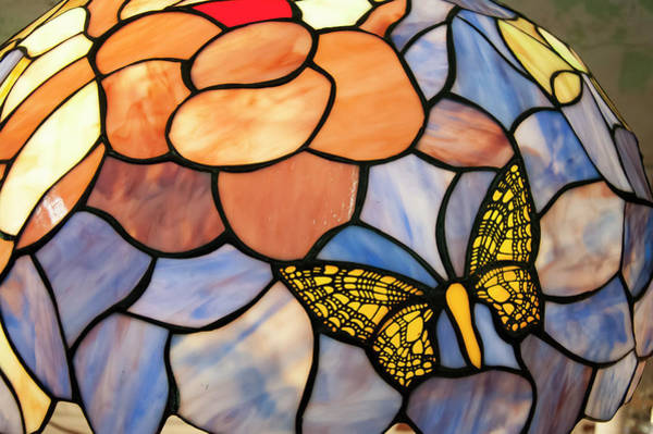 Photograph - Stained Glass With Butterfly by Chris Flees