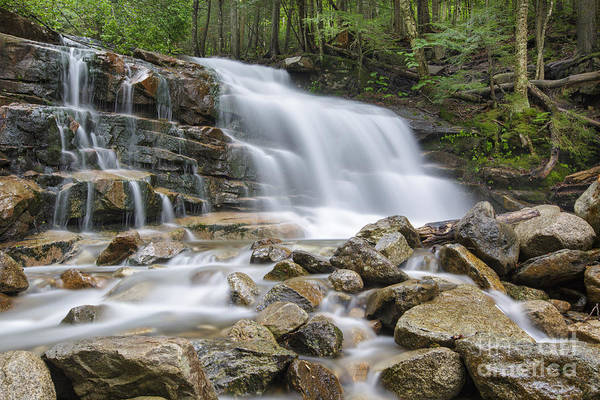 Photograph - Stairs Falls - Franconia Notch New Hampshire by Erin Paul Donovan