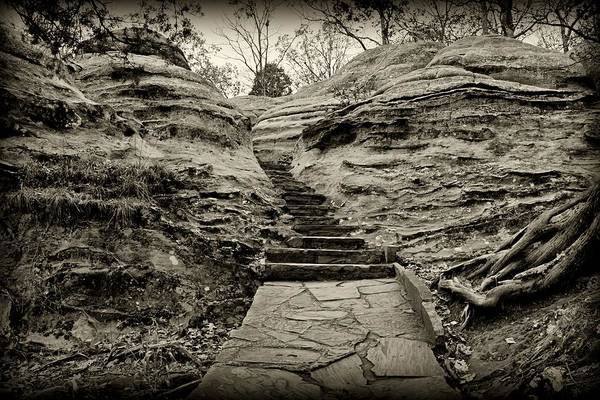 Photograph - Stairs by Sandy Keeton