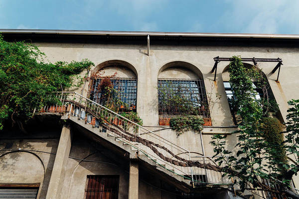 Photograph - Stairs To Large Italian Villa With Plants by Alexandre Rotenberg