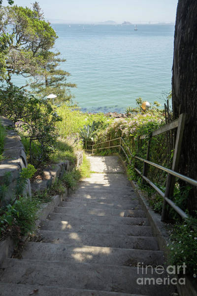 Photograph - Stairs Walkways Passages And Quiet Places Of Sausalito California Dsc6101 by Wingsdomain Art and Photography