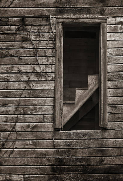 Stairs With A View Art Print