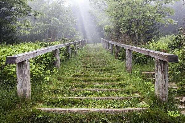 Photograph - Stairway Of Heaven by Debra and Dave Vanderlaan