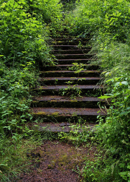 Photograph - Stairway Of Memory by Robert Potts