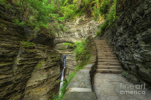 Watkins Glen Photograph - Stairway To Bliss  by Michael Ver Sprill