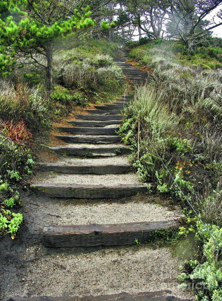 Photograph - Stairway To Heaven 1 by Joe Lach
