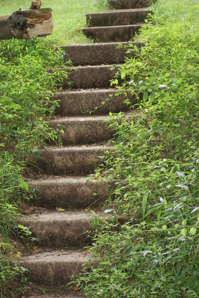 Wall Art - Photograph - Stairway To Heaven by Heather Green