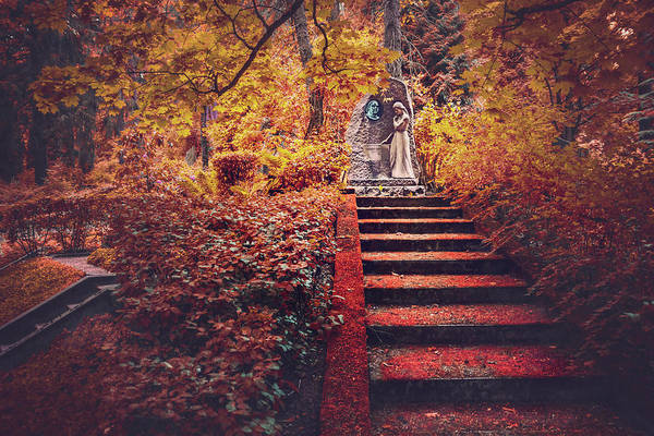 Cemetery Photograph - Stairway To Heaven In Riga Latvia  by Carol Japp