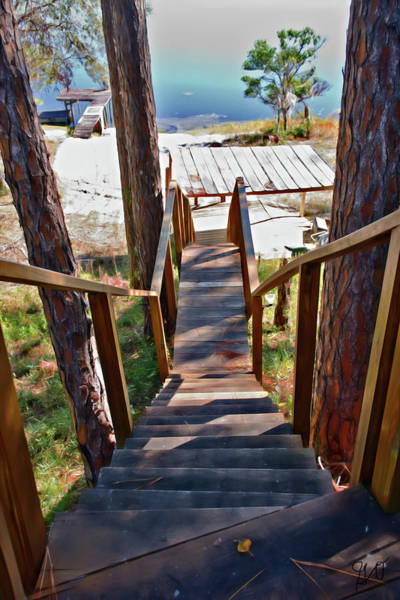 Photograph - Stairway To The Lake by Gina O'Brien
