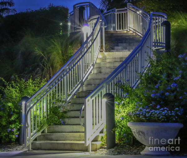 Photograph - Stairway To Tuckahoe by Tom Claud