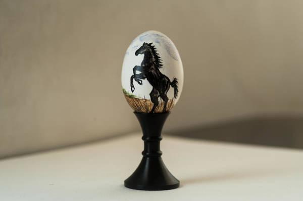 Painting - Stallion by Elizabeth Mundaden