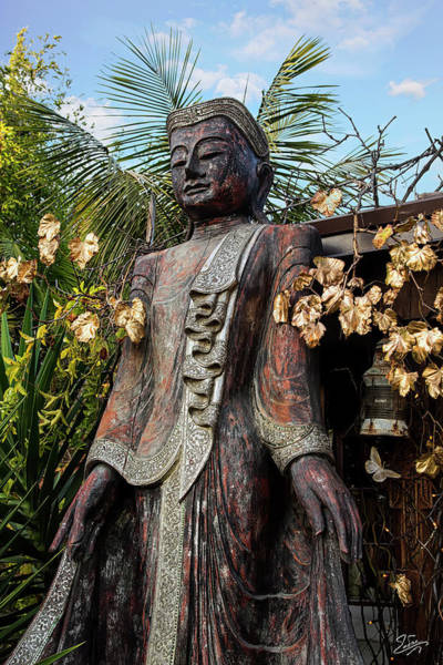 Photograph - Standing Buddha 2 by Endre Balogh