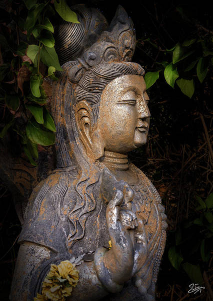 Photograph - Standing Buddha Number 3 by Endre Balogh