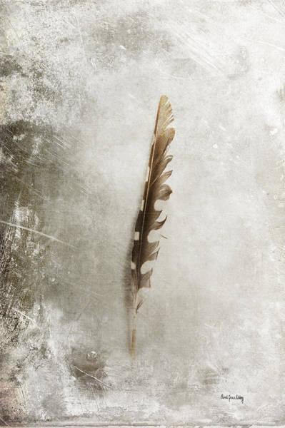 Photograph - Standing Feather by Randi Grace Nilsberg