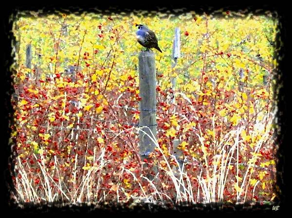Fence Post Digital Art - Standing Guard by Will Borden