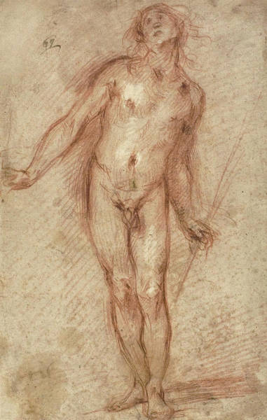 Baroque Drawing - Standing Male Nude by Cecco Bravo
