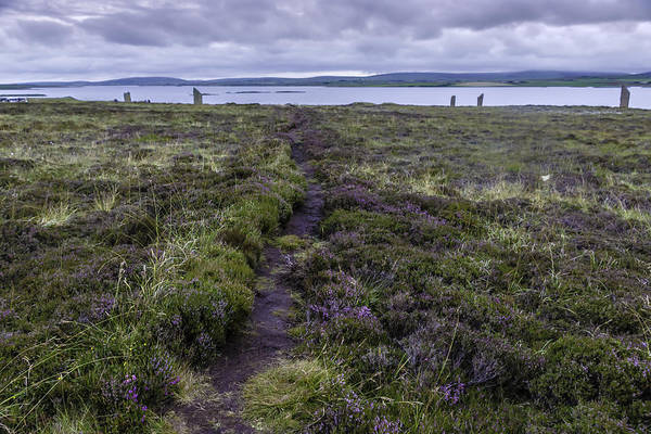 Photograph - Standing Stones Of Stenness, Orkney by Chris Coffee