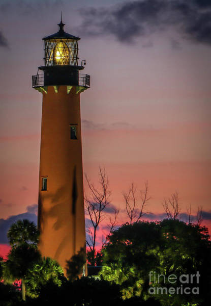 Photograph - Standing Tall - Jupiter Light by Tom Claud