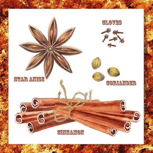 Wall Art - Painting - Star Anise Cloves Coriander Cinnamon by Irina Sztukowski
