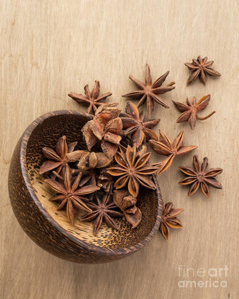 Photograph - Star Anise Pods by Edward Fielding