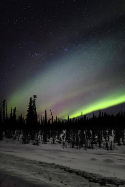 Photograph - Star Dust by Ed Boudreau