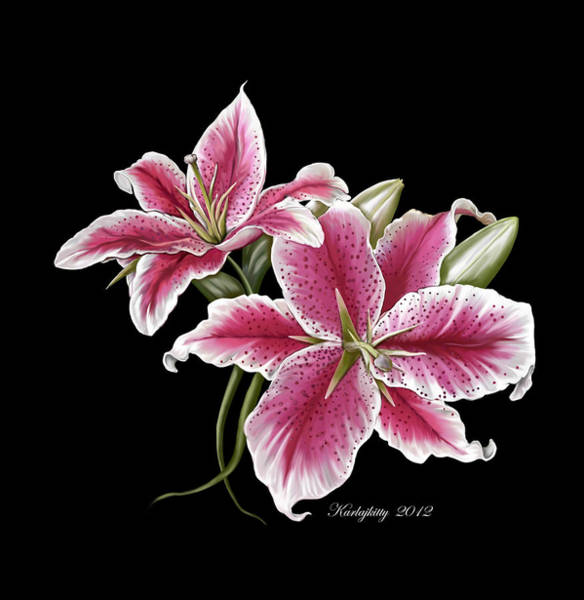 Digital Art - Star Gazer Lillies by Karla White