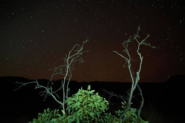Photograph - Star Light Star Bright by Paul Svensen