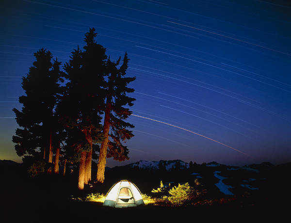 Campsite Wall Art - Photograph - Star Trails by David Nunuk