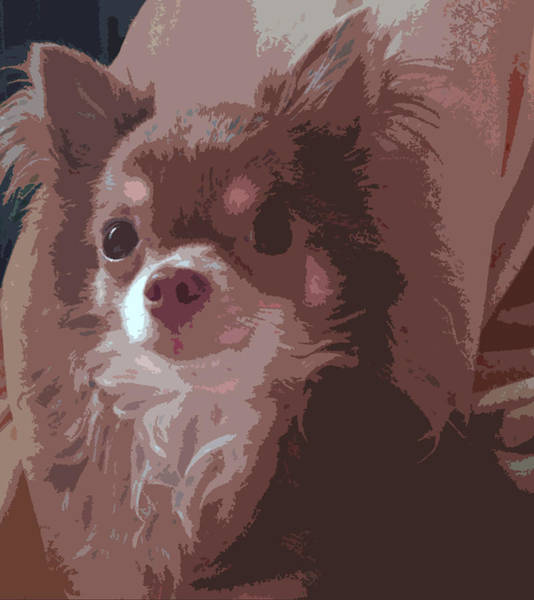 Animal Painting - Stare by Roro Rop