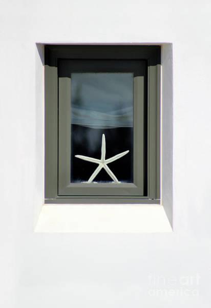 Photograph - Starfish Window 2016 No. 1 by Karen Adams