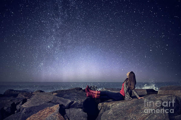 Wall Art - Photograph - Stargazer by Evelina Kremsdorf