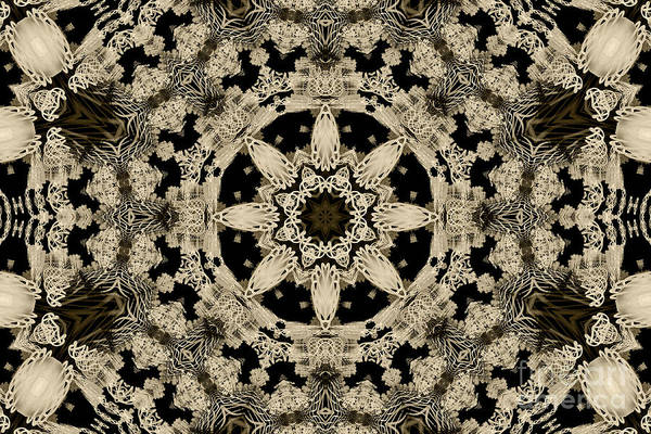 Digital Art - Starlight by Elaine Teague