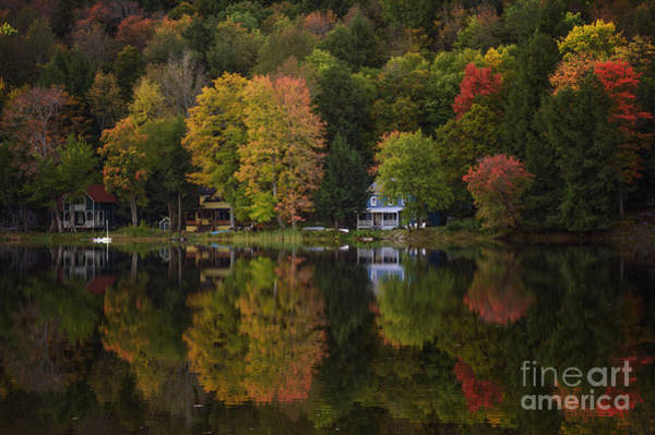Photograph - Starlight Lake by Debra Fedchin