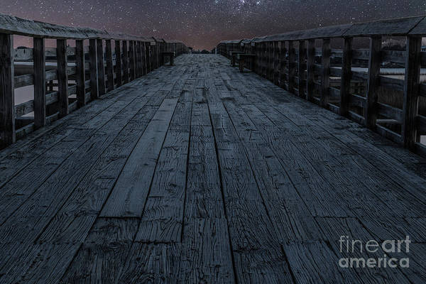 Photograph - Starry Night by Dale Powell