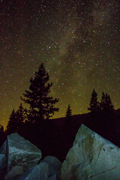 Photograph - Starry Night by Wes Jimerson