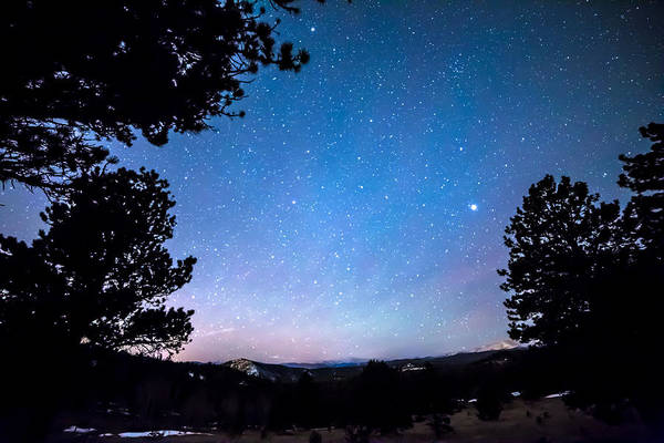 Photograph - Starry Rocky Mountain Forest Night by James BO Insogna