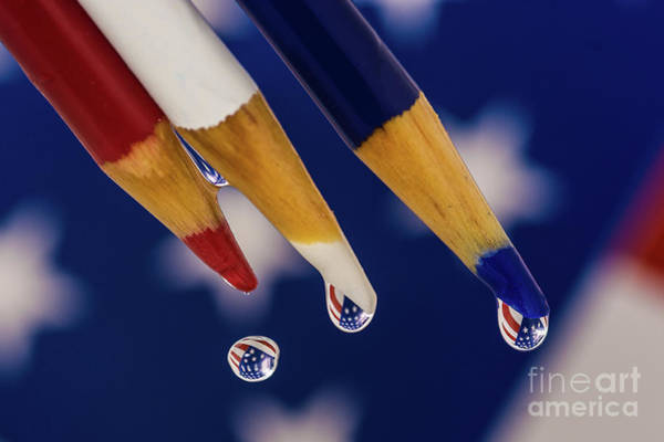 Photograph - Stars And Stripes by Alissa Beth Photography