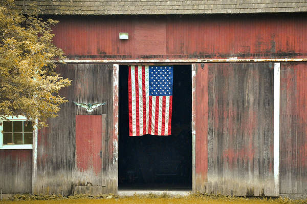 Photograph - Stars And Stripes by JAMART Photography