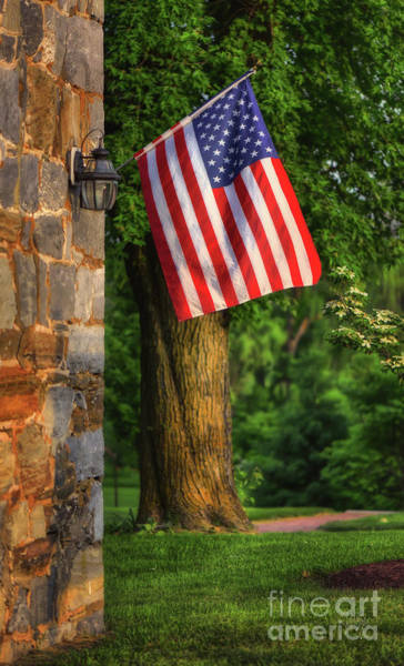 Wall Art - Photograph - Stars And Stripes by Lois Bryan