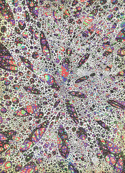 Create Painting - Stars Give Birth To Color by Vincent Alexander Booth