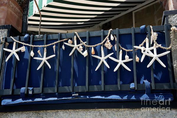 Photograph - Stars Of The Ligurian Sea by Brenda Kean