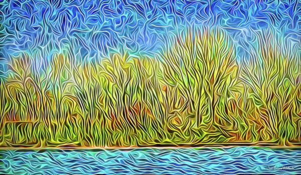 Digital Art - Stars Over Forest Lake by Joel Bruce Wallach