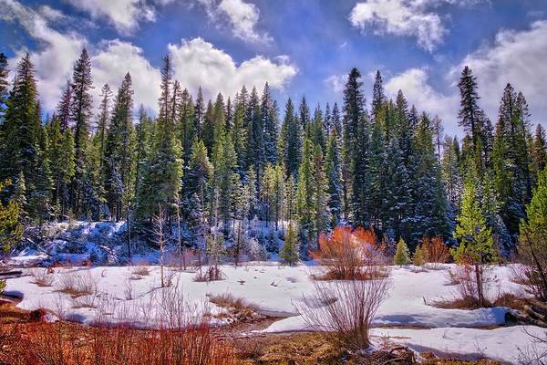 Photograph - Start Of The Spring Thaw by Lynn Bauer