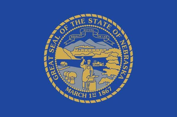 Nebraska Painting - State Flag Of Nebraska by American School