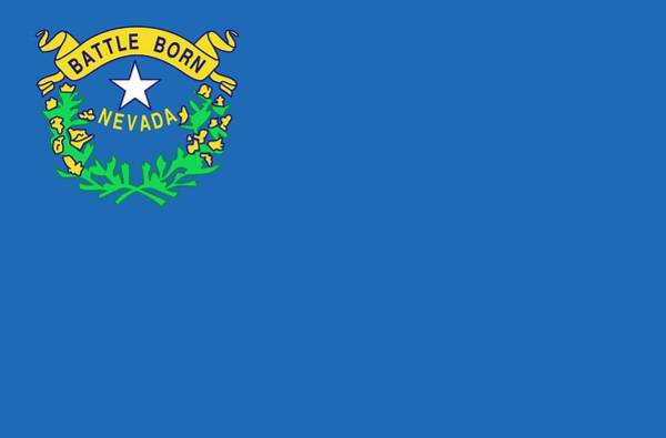 Painting - State Flag Of Nevada by American School