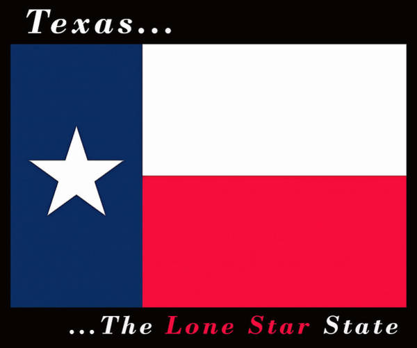 Painting - State Flag Of Texas by Floyd Snyder