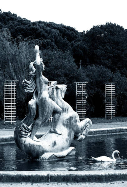 Photograph - Statue And Swan by Lorraine Devon Wilke