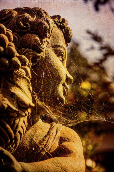 Wall Art - Photograph - Statue In Cobwebs by Garry Gay