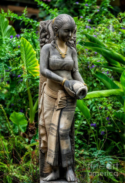 Photograph - Statue In The Garden by Adrian Evans