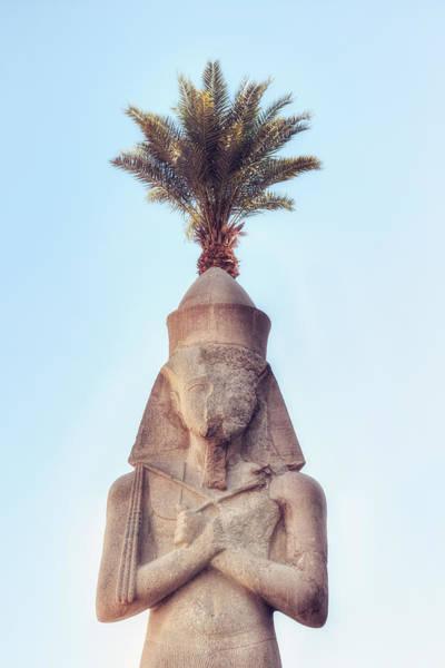 Ancient Egypt Photograph - statue of Ramses by Joana Kruse